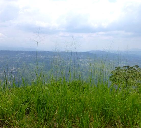 The Pico de la Cruz o The CROSS PEAK