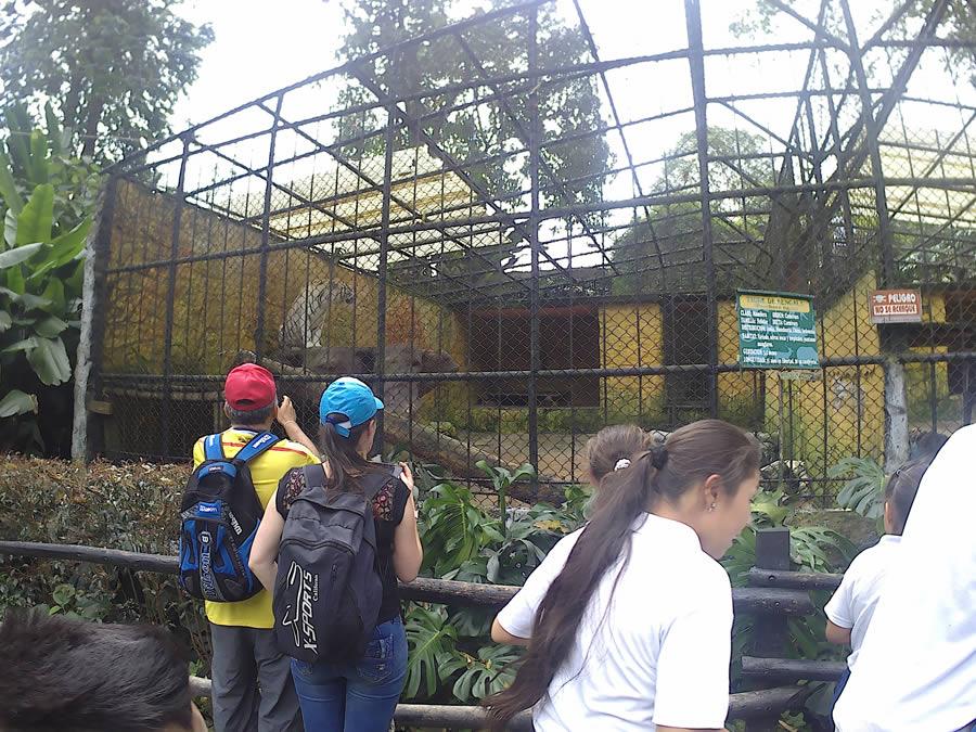 The Veracruz Zoo