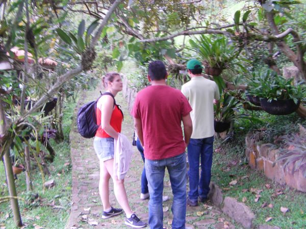 The Orchid Sanctuary a trip with Volunteer in Colombia.3